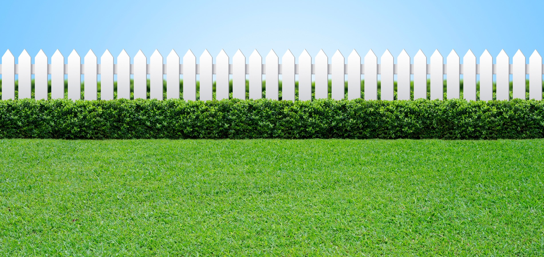 Grass and White Picket Fence